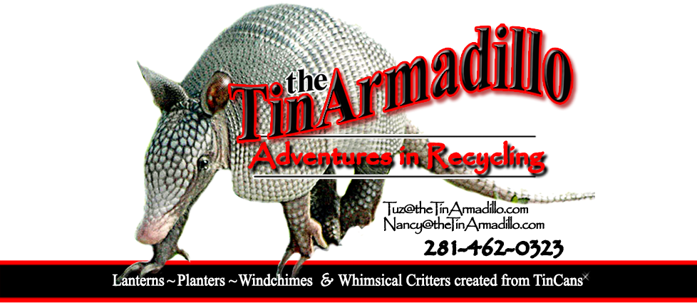 The Tin Armadillo